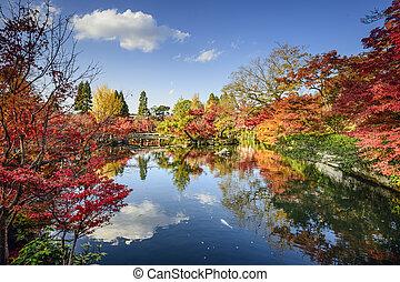 Fall Foliage in Kyoto, Japan - Kyoto, Japan fall foliage at...