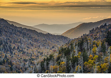Smoky Mountains National Park - Dawn in the Smoky Mountains...