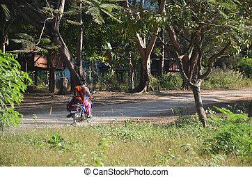 Road in Countryside at Tai Ta Ya Monastery or Sao Roi Ton...