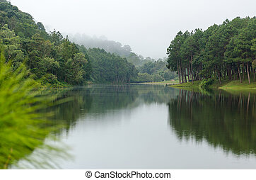Nature landscape at dawn of lakes and pine forests in Pang...