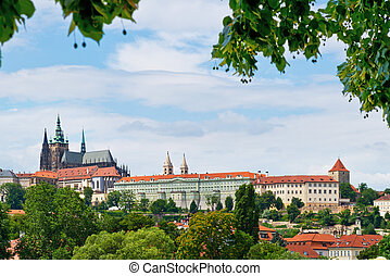 Prague Castle - panorama of Prague Castle with twig of lime