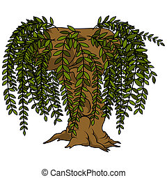 Willow Tree - Colored Cartoon Illustration, Vector
