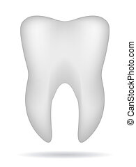 white 3d tooth with shadow