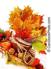 autumn still life with a bunch of colorful leaves and...