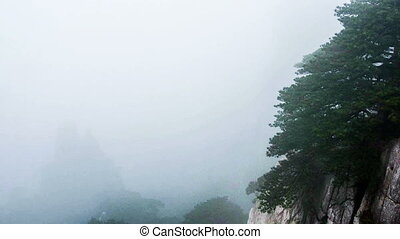 The fog & cloud in Yellow Mountain - The fog and cloud in...