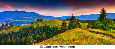 Colorful morning panorama of the summer mountains