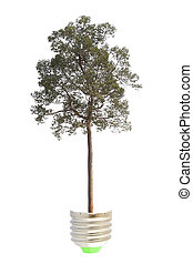 Green energy concept - green tree growing out of a bulb