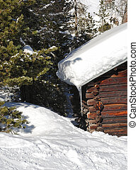 snow-covered wood house and fir tree in Dolomites -...