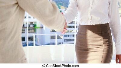 Pretty businesswoman shaking hands