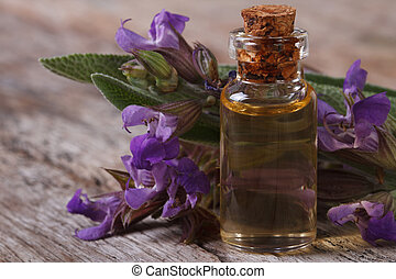 flowering sage and fragrant oil horizontal