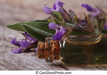 fragrant sage oil in a glass bottle macro horizontal -...
