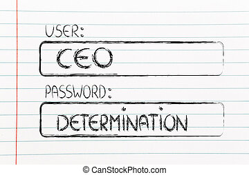 user CEO, password Determination - user and password:...