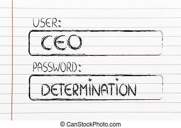 CEO, senha, determinação, usuário