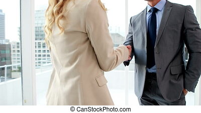 Man shaking hands with blonde - Handsome businessman shaking...