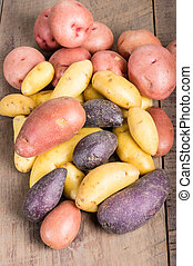 Group of fingerling potatoes on wooden table - Group of...