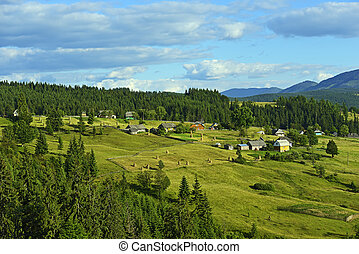 A village in the Carpathian mountains in summer