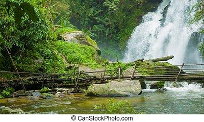 Bamboo bridge near a waterfall. Chiang Rai, Thailand - Video...