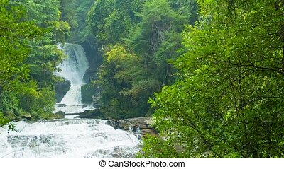 Big waterfall among the trees. Chiang Rai, Thailand - Video...