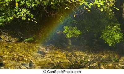 Rainbow over the creek near the forest waterfall