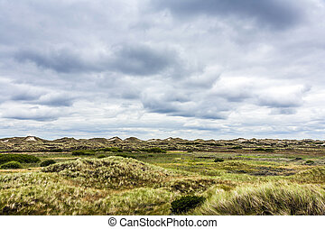 landscape at the island of fanoe in Denmark