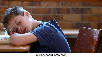 Little boy sleeping on a book