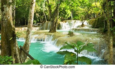 Kouang Si Waterfall, Laos, Luang Prabang. Thickets of...