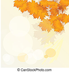 Autumn or fall leaves background