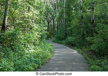 Marthaler Park Walkway - Trail winding through Marthaler...