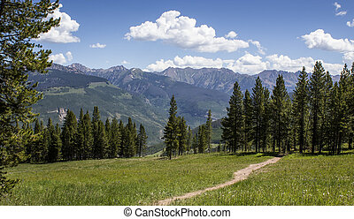 Hiking Trail on Vail Mountain in Colorado