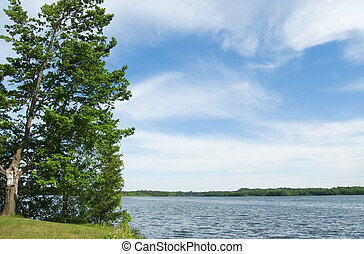 Scenic Lake - Scenic lake with trees on the shore and cloudy...