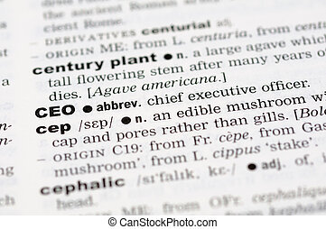 Dictionary definition of CEO