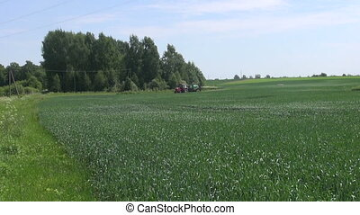 Tractor spraying wheat field with sprayer, herbicides,...