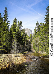 River in Yosemite National Park, USA
