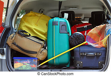 bag and trolley with a fishing net in the trunk of the car -...