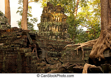 Trees intertwined with historic temple - Trees intertwined...