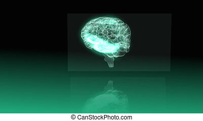 Revolving transparent human brain graphic on green...