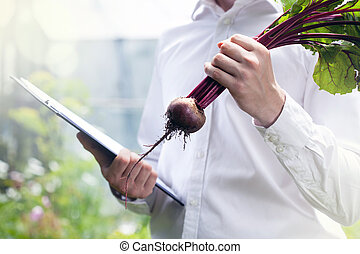 Beet contol in a garden - Horizontal view of beet contol in...