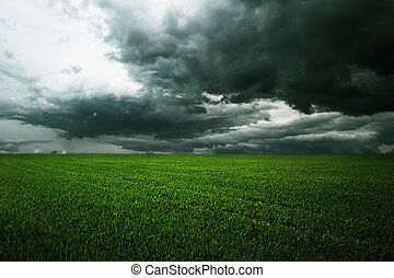 Storm dark clouds over field with grass