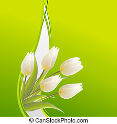 Tulips, bianco, compleanno, verde, Scheda