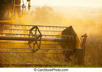 Detail of combine harvester on field - Combiner harvesting...