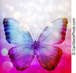 Multicolour background with butterfly, like abstract...
