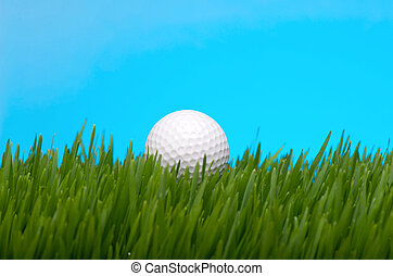 Golf ball in tall grass