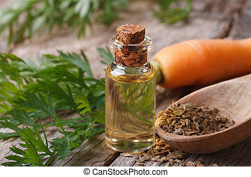 The essential oil of carrot seeds in a glass bottle macro -...