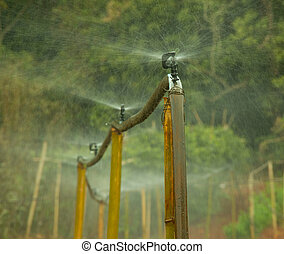 Third World Irrigation System - Third world irrigation...