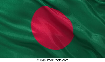 Flag of Bangladesh seamless loop - Flag of Bangladesh gently...