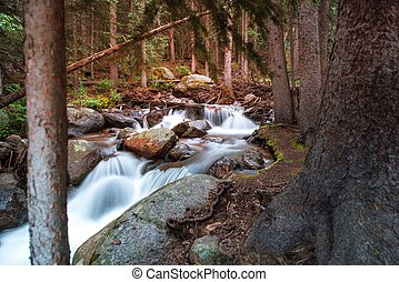 Wilderness Forest River - Wilderness Small Forest River....