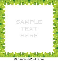 creative green leaf frame design background vector