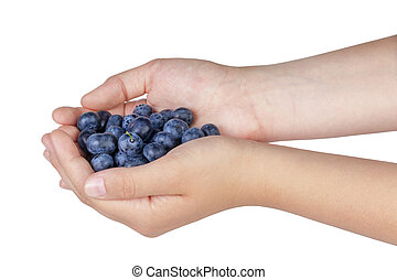 female teen hands holding ripe blueberries, isolated on...