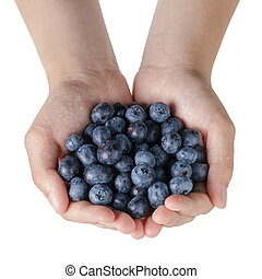 female teen hands holding washed blueberries, isolated on...