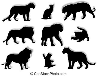 Feline silhouettes - Different feline silhouettes in...